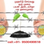 fencing works chennai