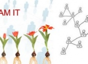 MLM Website Design Structure As You Like!!!!