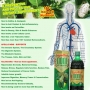 Noni Juice Product Manufacturer and Suppliers in India