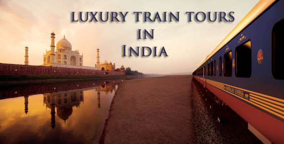 Tour of a lifetime experience the royalty in india