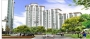 dlf new town heights/ dlf express greens sector 79 gurgaon 9958088662