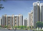 Parsvnath Privilege residential properties in Greater Noida 9899788350