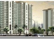 DLF Apartments  DLF Price  DLF Housing  DLF Homes @ 9873161628