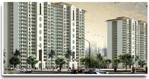 Dlf delhi project    dlf west delhi   