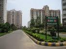 Rent Luxury 3 Bedroom + SQ Apartment Flat - Gurgaon