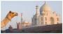 Taj Mahal Tour Package, taj mahal travel india