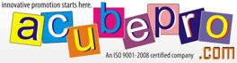 Web design company delhi by acube promotion house