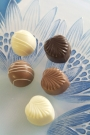 LEARN MOULDED CHOCOLATE BY THE PROFESSIONALS...