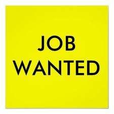 Job in karnal (job sewa a running placement)