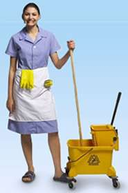 anita housekeeping services building management system domestic housekeeping