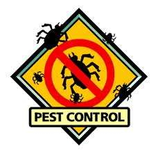 Pest control , pest control service