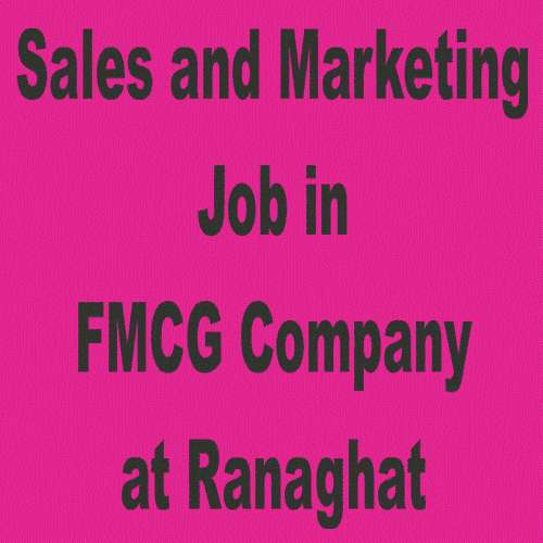 Shop to shop fmcg product sales and marketing job.dipa9874743332