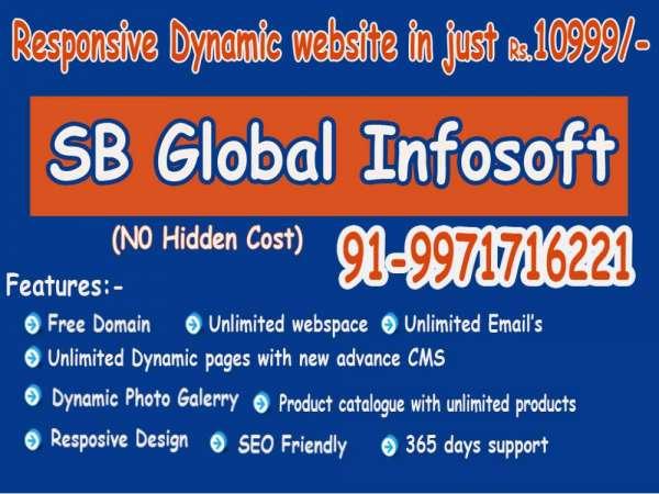 Responsive dynamic website designing services