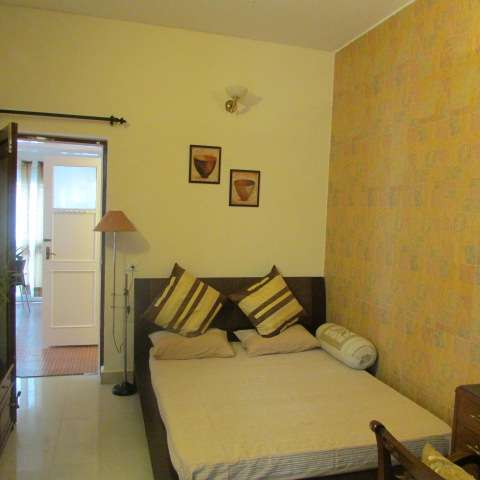 Fully furnished luxury apartment in jangpura