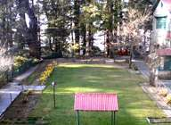 Farm house for lease/or sell /rent in himachal