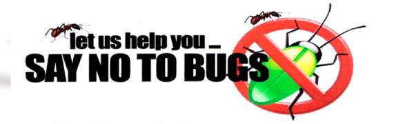 Active pest control in new delhi, noida, gurgaon, ghaziabad and faridabad