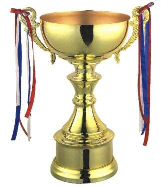 Trophies manufacturer in india, awards manufacturer in india