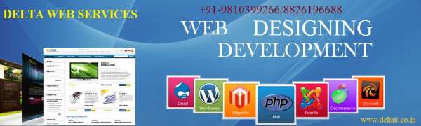 Web designing development and email solution company in gurgaon