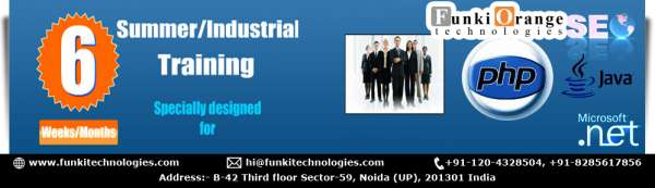 Summer/industrial training program with 100% placement and experience certification