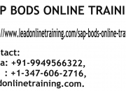 SAP BODS Online Training | SAP BODS basis Online Training in usa, uk, Canada, Malaysia, A
