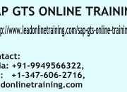 SAP GTS Online Training | SAP GTS basis Online Training in usa, uk, Canada, Malaysia, Aust