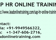 SAP HR Online Training | SAP HR basis Online Training in usa, uk, Canada, Malaysia, Austra