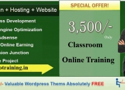 Seo,smo,wordpress training with free website