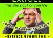 Green tea dealer in delhi extract green tea
