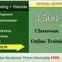 Seo,Smo,wordpress Training with free Website