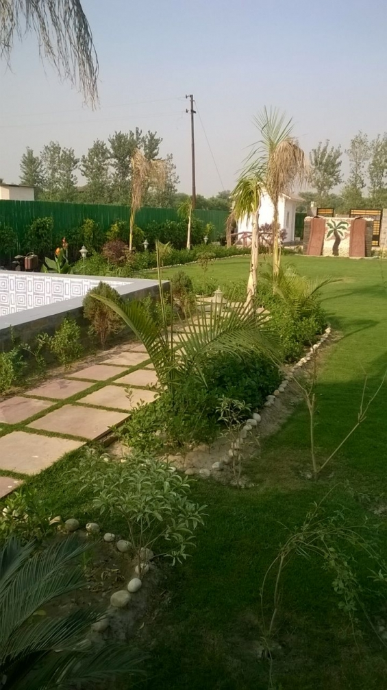 Hps greens farm houses @3000 (in resale also available) on noida x-pressway 91 999980895