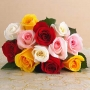 Mix rose bunches : winni