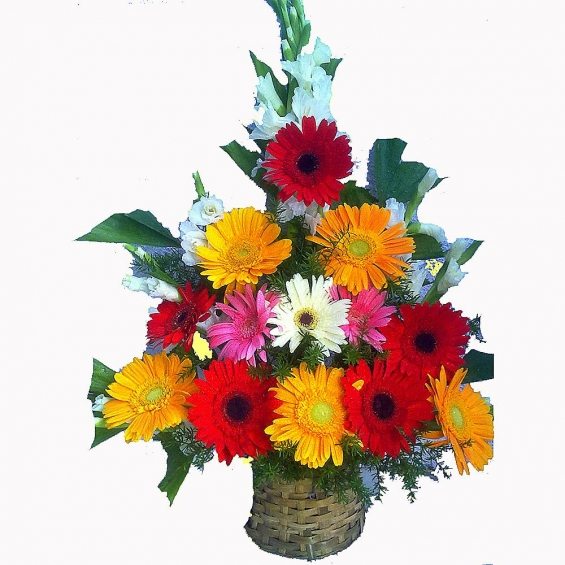 Gladilos and gerbera flower bouquet : winni