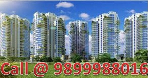 Resale pioneer park 3 bhk+s flat 1950 sq.ft sector 61 gurgaon call @ 9899988016