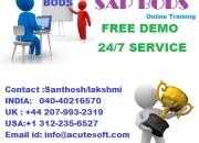 Sap bods online training