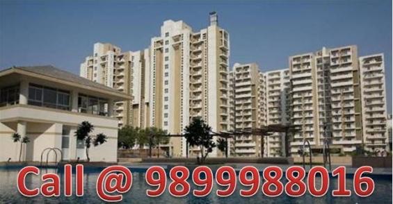 Orchid petals 3 bhk flat 1805 sq.ft resale sohna road sector 49 gurgaon call @ 9899988016