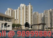 ORCHID PETALS 3 BHK Flat 1805 Sq.Ft Resale Sohna Road Sector 49 Gurgaon Call @ 9899988016