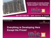 Affordable houses in Noida