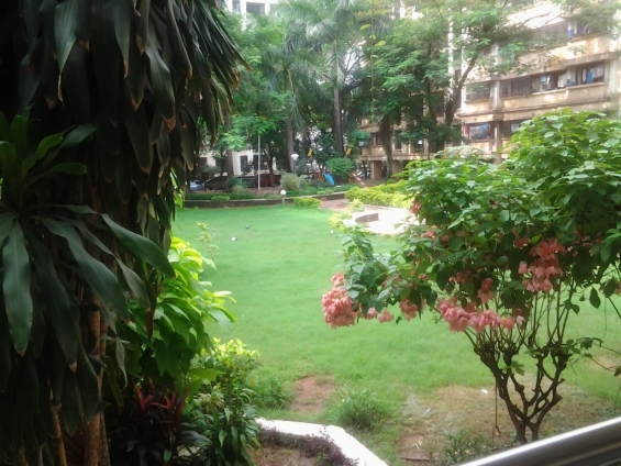 Luxurious nd beautiful 1 bhk for rent in kandivali east.