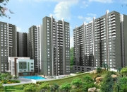 Sobha Forest View 3BHK Flat(Resale)