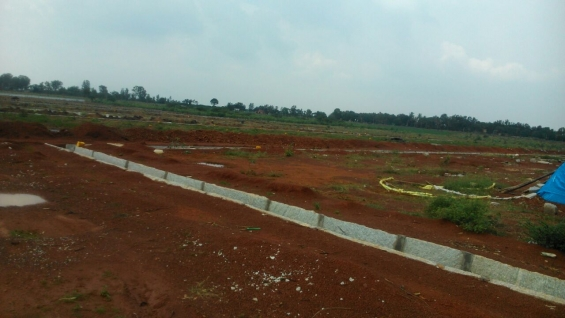 Pictures of Plots