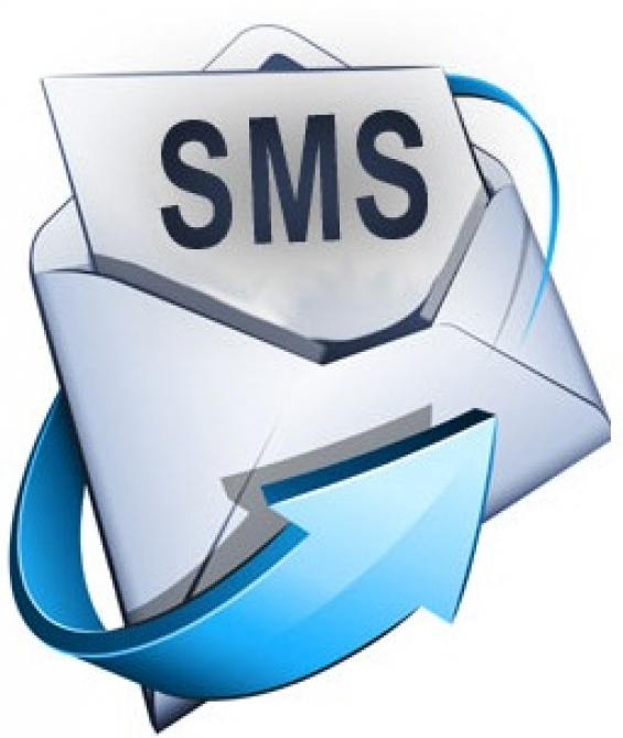 Automated bulk sms api for business applications: