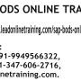 SAP BODS Online Training | SAP BODS basis Online Training in India.