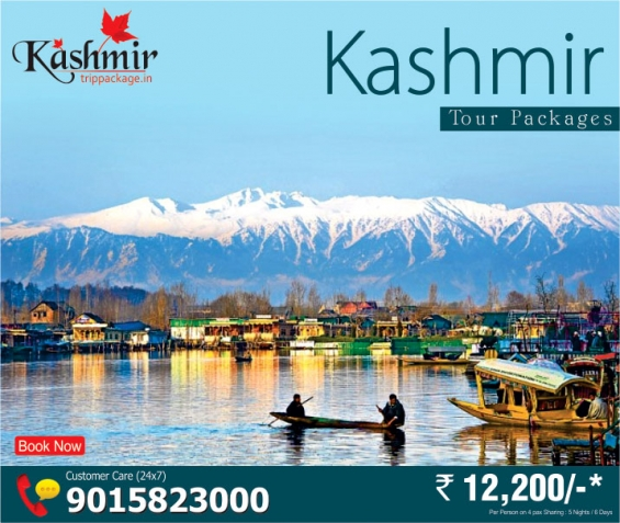 Enjoy Christmas New Year 2015 Eve With Kashmir Tour Package