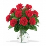 Send Bright Red Color Carnation To Special Once