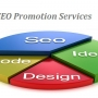 SEO Promotion Services for your business
