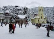 best tour operators in shimla