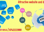 Static website for 4,000/-rscall9916991955