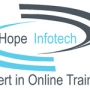 Business Analysis online training @ Hopeinfotech 9951609609