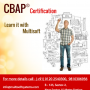 CBAP Certification– Learn it with Us to Clear the Exam at the First Attempt