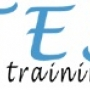 CSS Online Training in USA